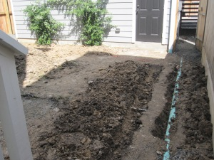Moving drain line so we can plant a privacy screen using Crape myrtles.