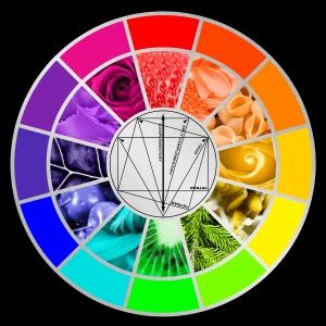 Color wheel in flowers.