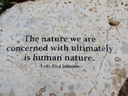 The Nature we are concerned with...