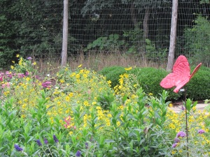 Butterfly attracting garden area with lots of herbs and flowering plants.