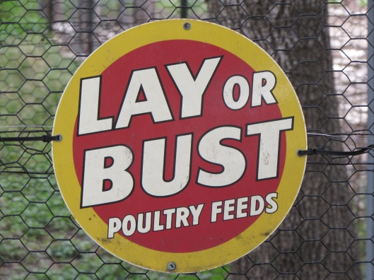 Lay or Bust sign