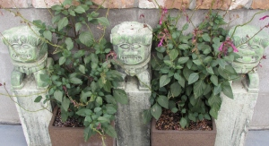 As you enter the pool area you are treated to statues, art and beautiful planters.