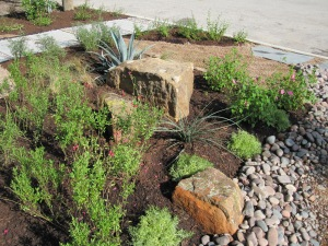 A nice selection of boulders with salvia greggi and red yucca in the foreground