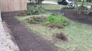 Before - clearing area for raised bed.