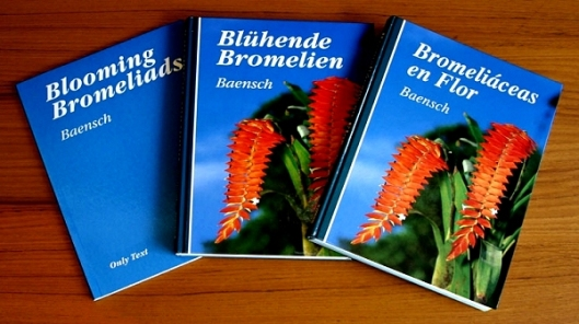 book blooming bromeliads