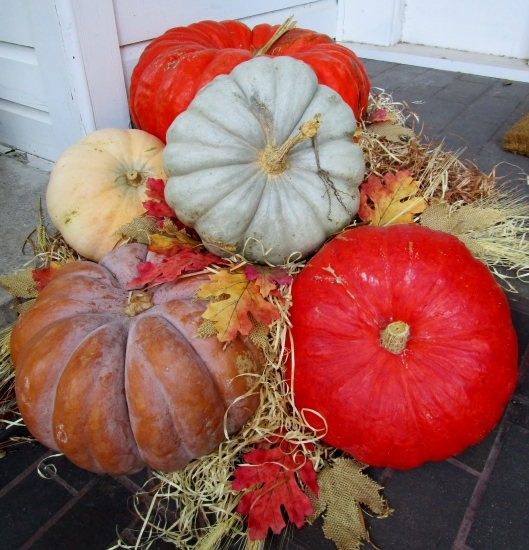 I was inspired by this pumpkin display!
