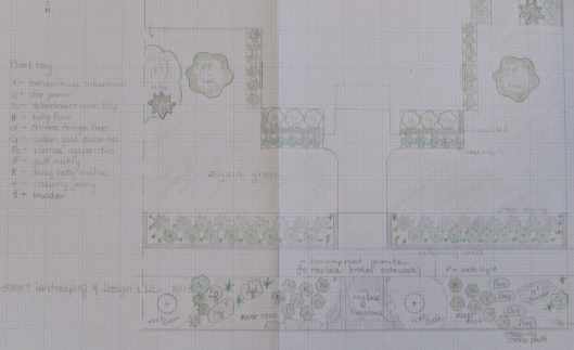 Design for front garden and right of way strip.