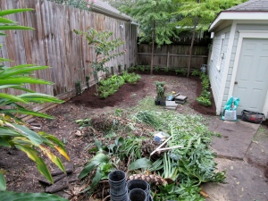 DURING, plant debris that was removed to make more room.