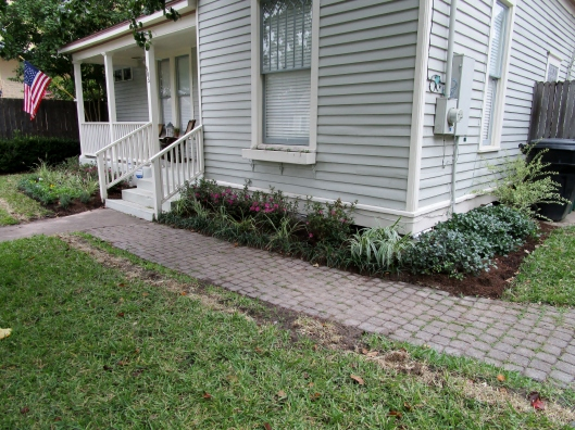 Front yard wrapped with azaleas and shades of green.