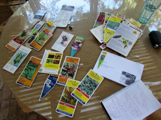 Debra is documenting the progress of each plant in her garden as research for her book.