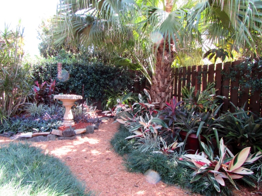 A soft curing path leads your around and through the garden.