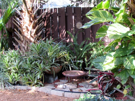 A nice tropical vignette with a water source for wildlife.
