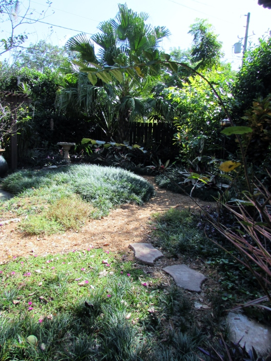 This open area is a combination of grasses and path made of pine needles.