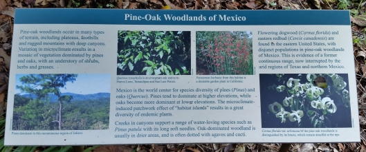 Part of Houston is Pine-Oak woodlands too!