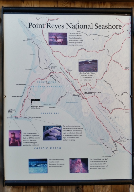 A map to give you an idea of the shape of the point. You can see Drakes bay where.