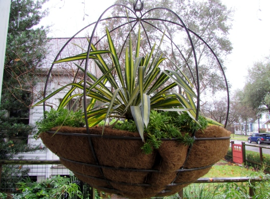 metal basket with yucca