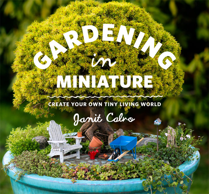 Gardening in miniature by janit calono with photo log of for Creating a small garden