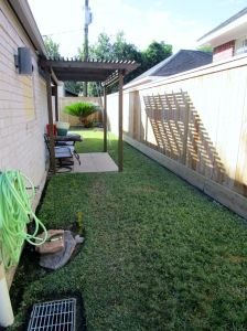 Before side yard.