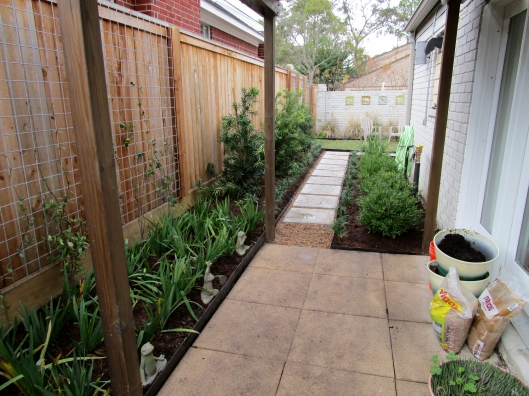 Side yard newly installed.