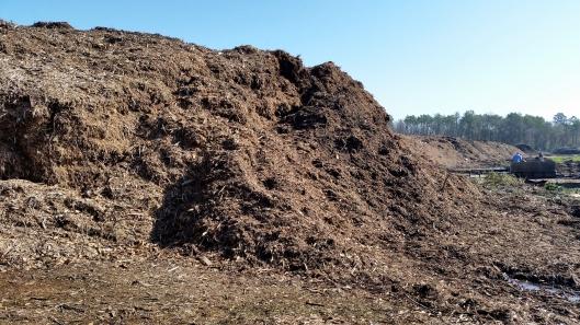 A pile of freshly shredded material.
