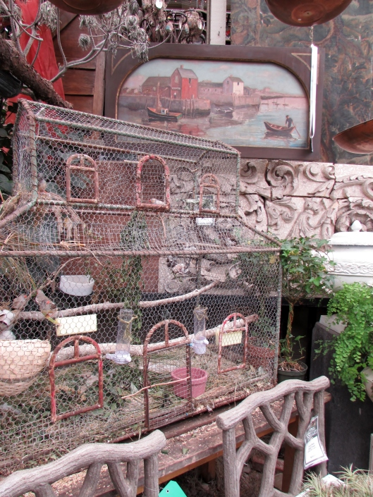 Lovely bird cage with live birds.