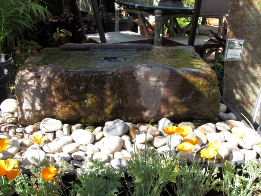 California poppies with a great stone fountain.