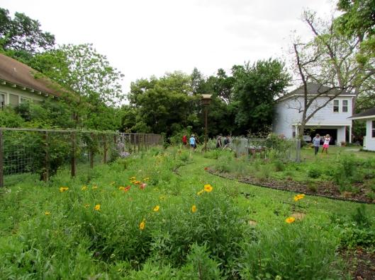 Bee garden in the Heights