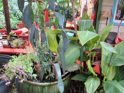 Jeff River Law garden Houston Texas
