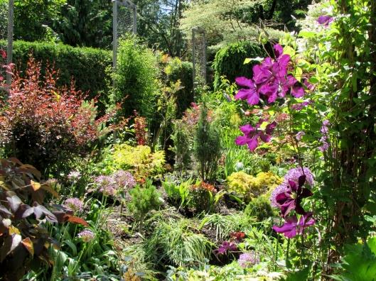 Jarvie Garden, Thornhill