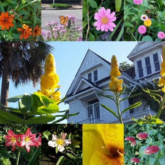 Barts Garden