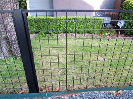 Before side yard