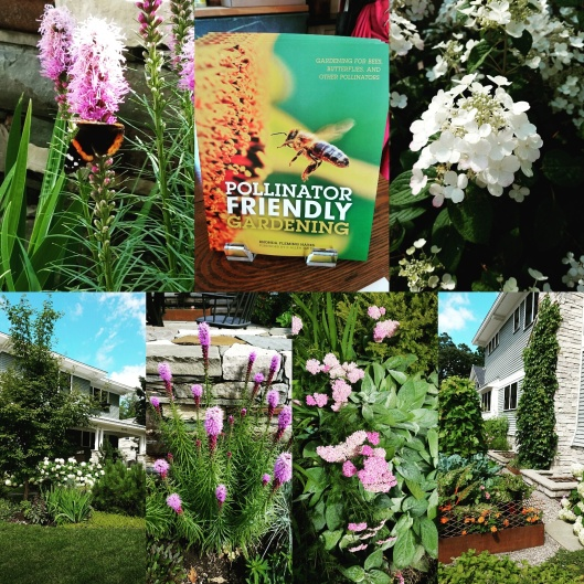 #GBFling2016 the garden of author Rhonda Fleming Hayes