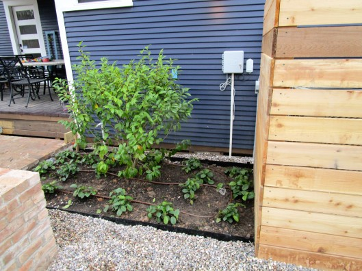Low emission drip irrigation