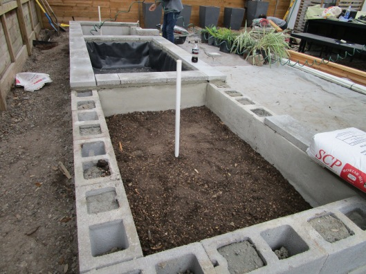 building raised bed with pond
