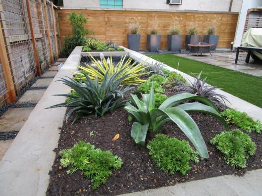 succulent bed