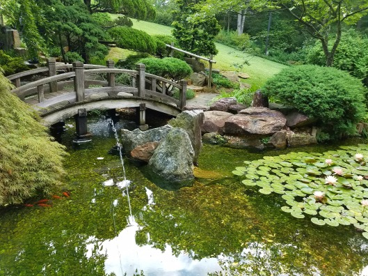 Japanese Garden at Hillwood Estate