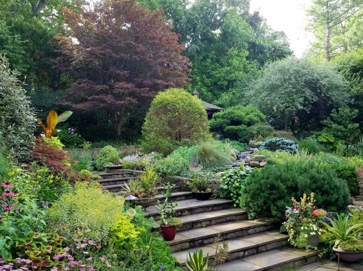 The garden of Barbara Katz owner of London Landscapes LLC