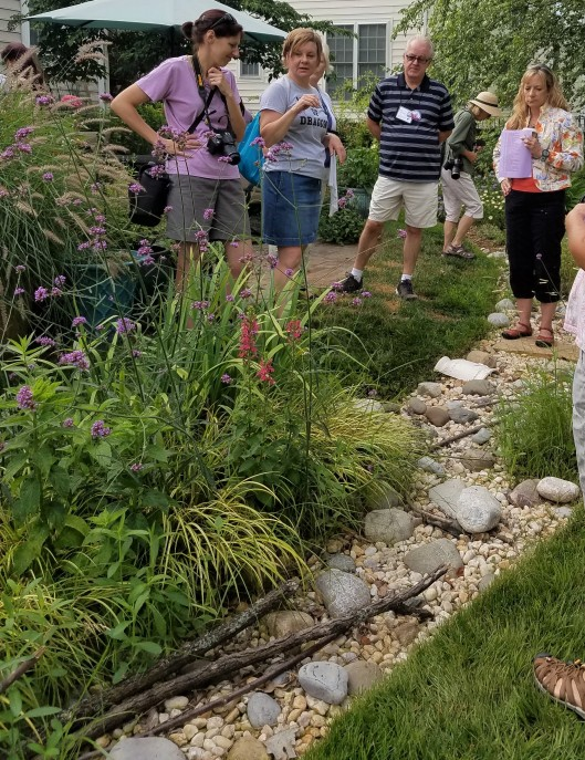 Tammy Schmiit explaining her rain garden