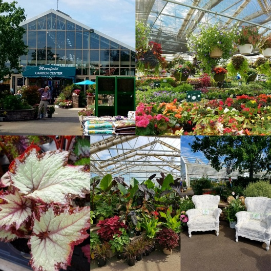 Merrifield's Garden Center Gainesville Virginia